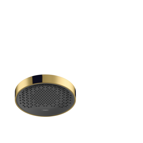 фото - Верхний душ hansgrohe Rainfinity 250 1jet 26228990 золото